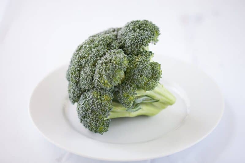 Broccoli on plate